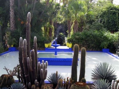 jardins-majorelle-avez-visite-jardin-etranger_239926.jpg