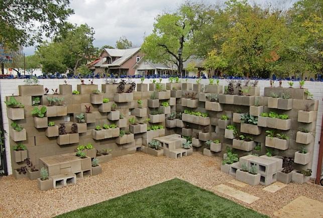 veggie wall1.jpg